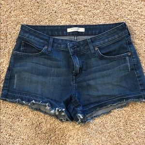 Rich and skinny denim shorts